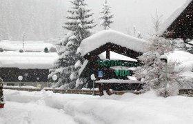 Alpen Hotel Vidi - Madonna di Campiglio-1