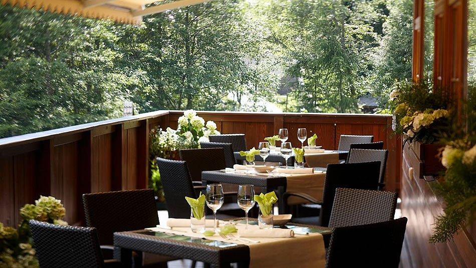 Bio Hotel Hermitage - Terrazza