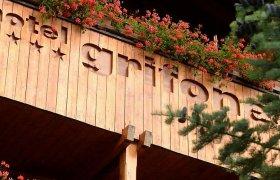 Style Hotel Grifone - Madonna di Campiglio-1