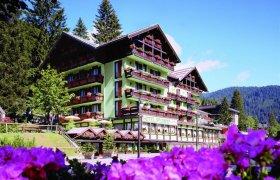 Hotel Splendid (Campiglio) - Madonna di Campiglio-0